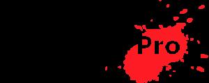 non-paint-pro-logo